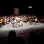 de la capoeira
