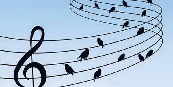5è, séquence II : comment peut-on dialoguer en musique ?